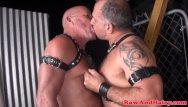 Mature gay porno Leather fetish bear barebacks chubby mature