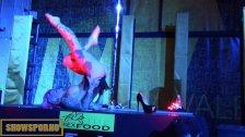 Hot pole dance in erotic festival