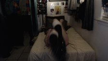 Lady Lorelei - Submissive Pet Shows Off For Her New Master