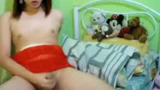 Asian Shemale jerks her cock