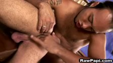 Wild Latinos have awesome bareback sex