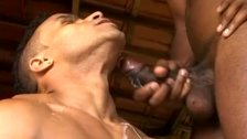 Gay studs in anal penetration