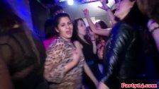 Jizzed on eurobabe partying hard