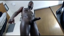 Mister Long And Thick Black 12 Inch Cock