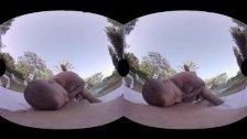 VirtualRealGay - Sunset threesome