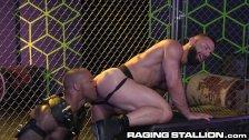 Interracial Hairy Big Dick Muscle Daddies Fucking ROUGH & HARD