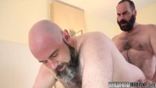 Hairy chub doggystyled unsaddled by hunk