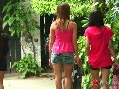 Asian Candy Shop Girls
