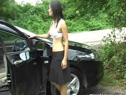 Тощий азии брюнетка показывает от ее кот в автомобиль