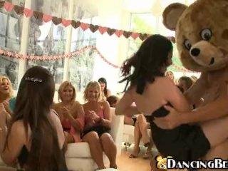 Happy bear having a party